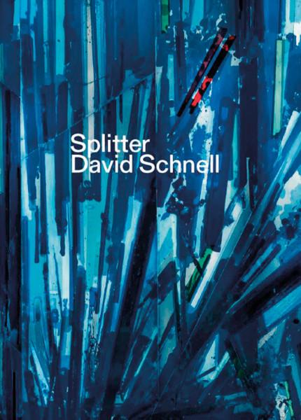 David Schnell. Splitter Kunstsammlungen Chemnitz; Herausgeber: Bussmann, Frédéric; Kraemer, Harald