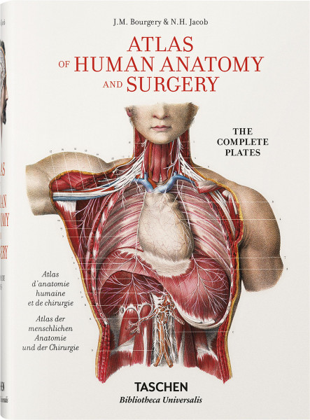 Bourgery – Atlas of Human Anatomy and Surgery (Jean-Marie Le Minor, Henri Sick (Hrsg.)) | Taschen Vlg.