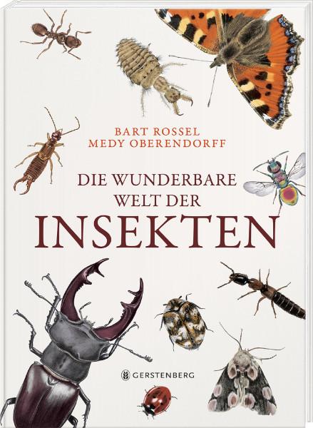 Gerstenberg Verlag Die wunderbare Welt der Insekten
