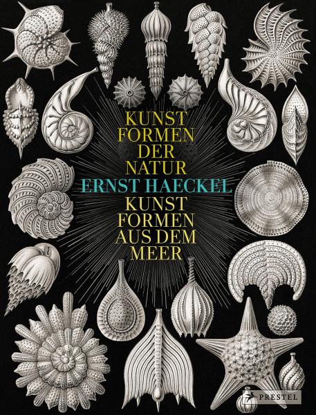 Ernst Haeckel: Kunstformen der Natur – Kunstformen aus dem Meer (Olaf Breidbach) | Prestel Vlg.